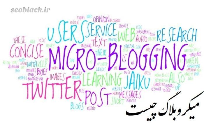 میکروبلاگ چیست