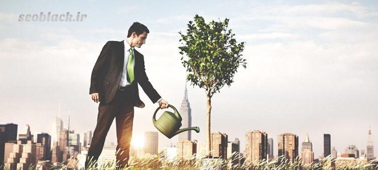 مراحل رشد کسب و کار
